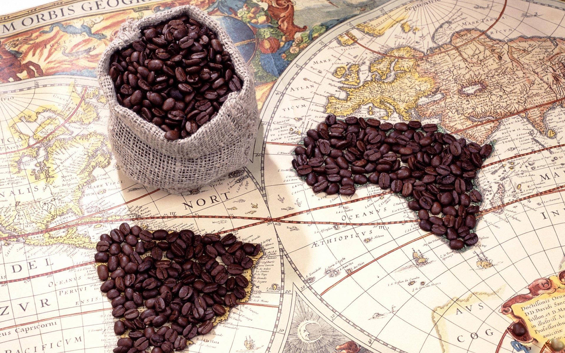 История кофе: из Эфиопии в страны Запада